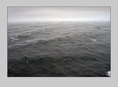 "Камакин А. Дождь • <a style=""font-size:0.8em;"" href=""https://www.flickr.com/photos/127888002@N02/23128389810/"" target=""_blank"">View on Flickr</a>"