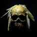 Skull with feathers, Zollverein Coal Mine Industrial Complex (Essen, Germany)