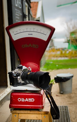 _DML1496 (duncen.mcleod) Tags: windmill ren marken zaanseschans molens paardvanmarken oudehuisjes