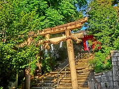 town, Sumiyoshi, Osaka (jtabn99) Tags: town shrine jinja osaka japan nippon nihon 20160831 alley stairs torii