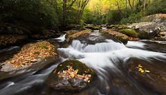 Big Creek - Great Smoky Mountains NP, North Carolina (pvarney3) Tags: greatsmokymountainsnationalpark northcarolina gsmnp nc wnc westernnorthcarolina bigcreektrail bigcreek bigcreekgreatsmokymountains autumn fall leaves