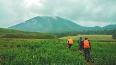 How far we can go ? (jibril_alqarni) Tags: indonesia mountain landscape people semeru savanna orooro ombo nature