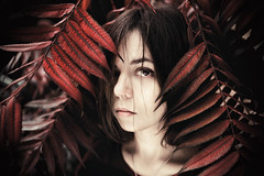 red nature portrait  (Still.Loony) Tags: people self portrait eyes red leaves girl face selfportrait nature canoneos6d