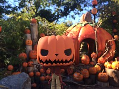 The Pumpkin King (pullip_junk) Tags: pumpkinking popvinyl funkopop pop jackskellington nightmarebeforechristmas