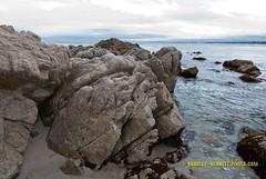 025 coast LR (bradleybennett) Tags: water river ocean stream creek beach shore shoreline line coast tide
