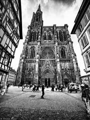 Cathdrale Notre-Dame, Strasbourg, France (Etienne Ehret) Tags: cathdrale notredame strasbourg alsace france noir blanc noirblanc black bw white light lumire architecture street rue canon 5d mark iii samyang 14mm f28
