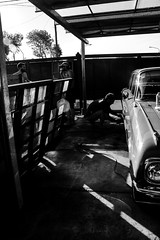 En el Taller (Laura__0000) Tags: falcon falconverde ford fordfalcon automobile automoviles autos autosclasicos cars classiccars motors rides taller workshop transportation vehicle vehiculo mardelplata buenosaires argentina fordfalcon1962 blackandwhite blancoynegro costaatlantica american americano auto bw canon city ciudad clsicos composition documenting drive explore favoritas favorite fotografa image labor life monochrome monocromatico objects old photo photography popular style work worldcars handwork lifestyle spontaneousshots stolenshots people person persona man gente human spontaneous candid antique iron gate fotosrobadas espontaneas fotosespontaneas