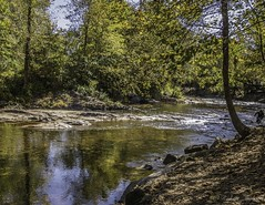Detecting for gold (roberttaylor25) Tags: ga georgia helen nature usa waterbodies fall streams
