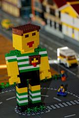 Lego - Fans de Briques - 2016 - Bordeaux (paflechien33) Tags: legofansdebriques2016 nikon d800 sb900