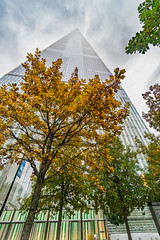 Freedom Tower Rising in Autumn (Havoc315) Tags: sonysony a6300 sonya6300 autumn freedomtower nyc newyorkcity