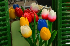 wooden tulips (coffeebucks) Tags: amsterdam prinsengracht canal tulips flowers reflection clogs shutters green