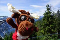 DSC00225 (The Crochet Crowd) Tags: crochetmoose amigurumi moose crochet doll alaska britishcolumbia thecrochetcrowd michaelsellick jeannesteinhilber danielzondervan crochetcruise mooseontheloose