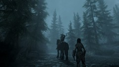 Forest (MrPker5) Tags: skyrim special edition pc gaming game forest fog companion dragonborn