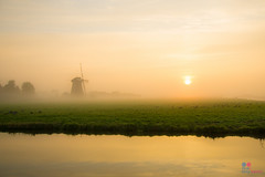 Misterious sunrise (Tony Kanev) Tags: sunrise mist fog windmill quiteness loneliness water nrc