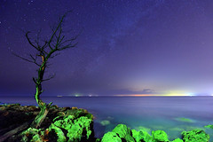 DSC_7534 (david linson) Tags: 美麗台灣 墾丁國家公園 星空 beautiful taiwan kenting national park starry sky