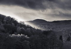 Cardington (chrisduncash) Tags: caercaradoc longmynd shropshire winter bw cardington caradoc countryside blackandwhite duotone churchstretton gap strettongap steep climb hill