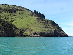 Akaroa on Banks Peninsula. Kayakers on the harbour near the Pacific Ocean entrance to the collapsed caldera. (denisbin) Tags: akaroa crater caldera harbour cliffs french duvauchelle bankspeninsula newzealand christchurch library royalalbatross albatross pacificocean cottage church swimwithdolphins boat anglican kayyakers