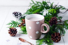 vintage Cup of hot cocoa on wooden background decorated with spruce and pine cones, (lyule4ik) Tags: christmas cocoa vintage pine breakfast spruce hot background chocolate wooden decorated closeup comfort cup dessert drink fir food holiday milk mug rustic tree white winter xmas aromatic beverage bowl break year bauble merry marshmallows seasonal celebration branch advent red cappuccino spice caffeine cone sweet life conifer new wintertime tradition decoration