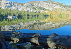 Fall Morning on Lake George, Mammoth Lakes, CA 9-16 (inkknife_2000 (7 million views +)) Tags: mammothlakes lakegeorge waterreflections dgrahamphoto usa landscapes bluesky stillwater california sierranevada mountains alpinelakes crystalcrag forest pines still water fallentree deadtree log