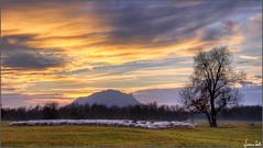Transumanza (Luciano Silei - sky7) Tags: transhumance transumanza pecore gregge sheep flock sunset tramonto landscape panorama canon7d canonefs18200mmf3556is lucianosilei