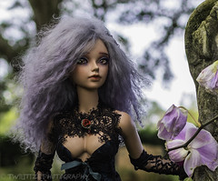 Andariel (twilitize) Tags: adorable adventure art awesome angel beautiful beauty bjd bjdphotography cool cute canon cutie canonphotography camera doll dolls dolly dollphotography darling girl girls girly good gothic hair happy andariel