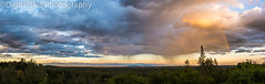 Rainy Day Rainbow Panorama (DigitalSkill) Tags: rainbow rain rainy redding weather sun clouds trees mountains colorful shasta mt lassen green yellow blue beauty
