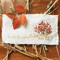 Daily Stitching - Nov.22.2016 (ivoryblushroses) Tags: instagramapp square squareformat iphoneography uploaded:by=instagram juno embroidery dailystitching stitching linen floss