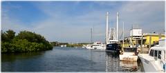 Tarpon Springs, Florida - Sponge Docks Seafood Festival (lagergrenjan) Tags: tarpon springs florida sponge docks seafood festival boats