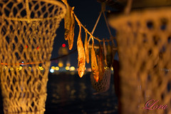 Dhow history (lorezefin) Tags: qatar doha outdoor fishermen dhow night nikon fish creel