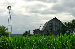 standing sentinel over falling buddy (WORLDS APART PHOTO) Tags: windmillwednesday windmills barn rustic rural ruraldecay corn farming agriculture agriculturalbarns agriculturaldecay sewisconsin wisconsin summer outdoors