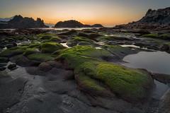 The green side of the sea (martin.matte) Tags: tenerife teneriffa spain europe canaryislands elpris water seascape landscape ocean moss moos sunset sonnenuntergang