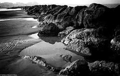 bassa marea (the best maio) Tags: sea mare bassamarea analogico grain grana