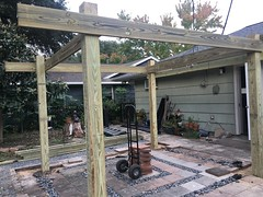 Day 2 (Nieve44/Luz) Tags: pergola patio