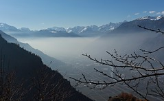 fin stratus (bulbocode909) Tags: valais suisse isrables montagnes nature stratus brume automne paysages bleu branches arbres