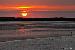 2015-08 Zonsondergang - wachten op de Perseden (Stellendam) (Meteo Hellevoetsluis) Tags: sea haven beach netherlands weather strand nederland sunsets zee lowtide augustus stellendam eb goeree meteo specials zuidholland 2015 nld 0812 havenhoofd zomerseizoen collecties provinciezuidholland mnd08