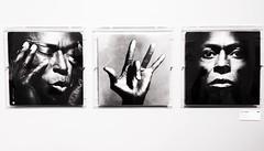 Miles Davis Tutu (TigerFly (bla)) Tags: vinyl jazz record miles davis arles tutu pochette disque vinyle irvingpenn totalrecords