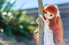 Tropico (0ctavie) Tags: red planning wig carrot tropic groove pullip custom custo jun ovie tropique octavie persehone stica persphone 0ctavie 0vie