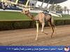 الشوط 4 (الأول في عالم الهجن) Tags: فزاع دبي الناموس الهجن سباقات المرموم الناموسدوتكوم تمهيديالمرموم