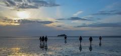 Dans la Baie du Mont St Michel (LadyG29) Tags: soir excursion montstmichel balade