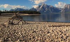 Grand Teton National Park (udbluehens) Tags: grandtetonnationalpark jacksonlake mtmoran colterbaypicnic