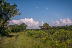Ranch House Rd. (ric.aldrich) Tags: nature landscape places myakka otherkeywords dryprairie