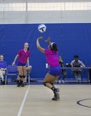 Dig Pink 2015-7885 (Lewis and Clark Community College) Tags: cancer volleyball awareness lc trailblazers womensvolleyball lewisandclarkcommunitycollege