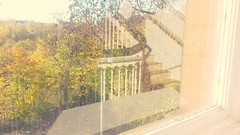 Autumn stairs (Mazetta) Tags: autumn trees west reflection college window leaves stairs glasgow indoor kelvin end