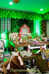 FAZENDINHA DO TULIO 2015 FINAL-19 (agencia2erres) Tags: aniversario 1 infantil festa ano fazenda fazendinha