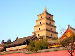 xi'an-gian-wild-goose-pagoda