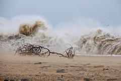 The Power of the Sea (Colin Kavanagh) Tags: ireland sea seascape beach water canon sand waves tamron wicklow arklow 700d t5i