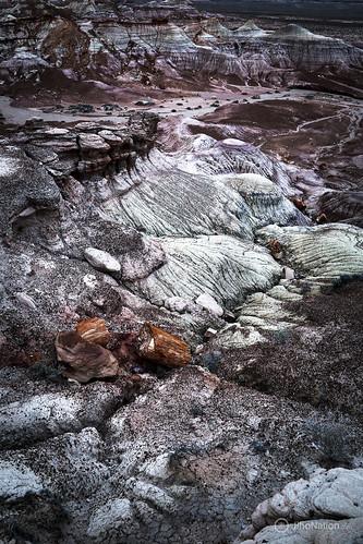 JihoNation-jiho-sohn-baltimore-photography-0009-IMG_8582 petrified-forest-arizona-national-park