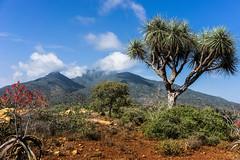 landscape around Sheikh Hussein. Anajina . Ethiopia (courregesg) Tags: history muslim islam religion ethiopia ethnic pilgrimage ethnology bal historicalplace sheikhhussein anajina