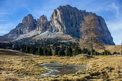 Sassolungo (xmibux) Tags: autumn winter italy mountains alps tree nature landscape italia herbst natur berge alpen landschaft baum dolomites sdtirol altoadige dolomiten langkofel sassolungo