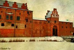 WINTER- 2010 107 (Elisabeth Gaj) Tags: winter architecture skne europa sweden sverige malm szwecja texsture elisabethgaj 100commentgroup